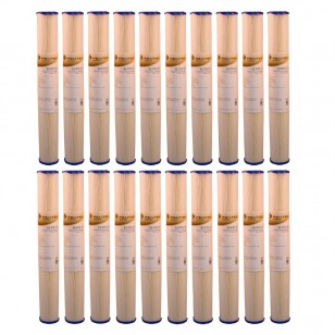 ECP20-20 Pentek Replacement Filter Cartridge (20-Pack)