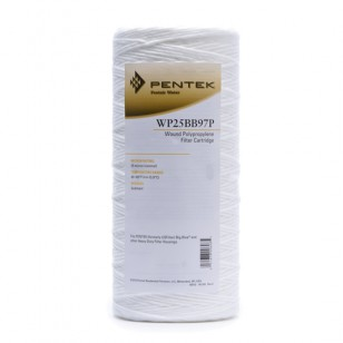 Pentek WP25BB97P Whole House Water Filter Replacement Cartridge