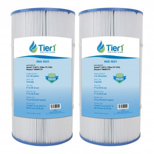 817-0075N Waterway Clearwater Comparable Pool and Spa Filter Replacement by Tier1 (2-Pack)