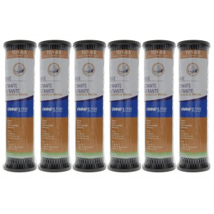 TO1SS OmniFilter Whole House Water Filter Replacement (6-Pack)