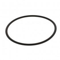 W2390009 Doulton Filter Housing Sump O-Ring