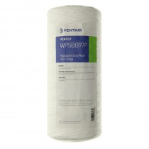 Pentek WP5BB97P Replacement Water Filter Cartridge