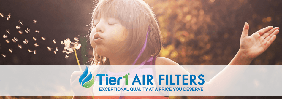 Air Filter Page Banner